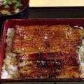 毎日だって食べたい!大好きな鰻 「登亭」行ってきた